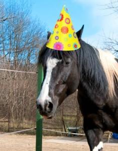 Annie narozeniny