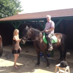 Jízdárna a koně